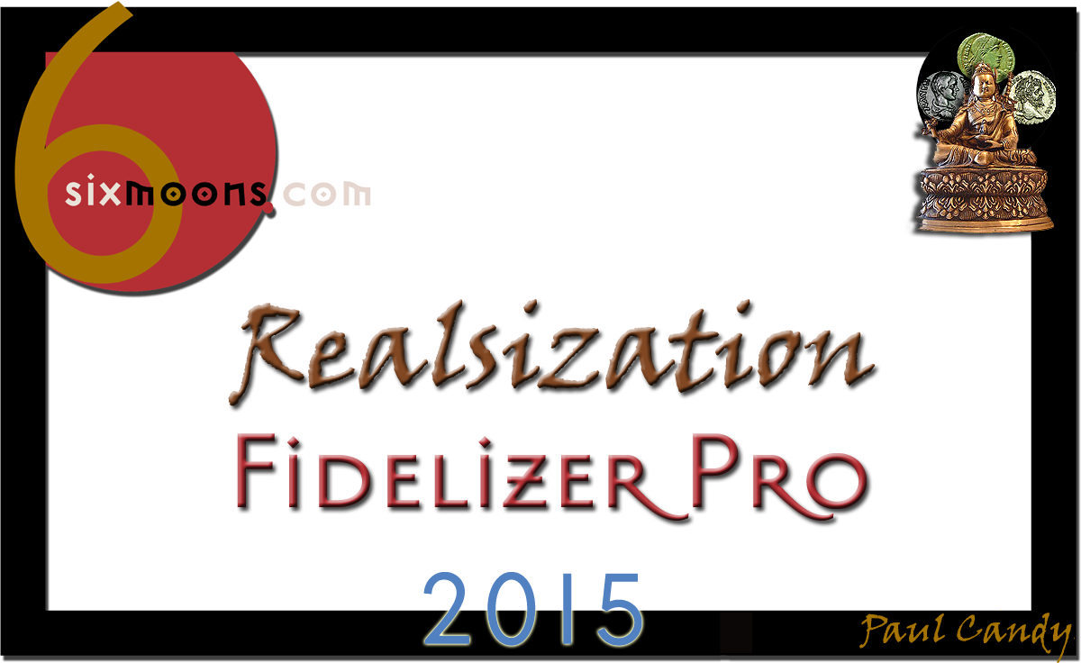 6moons Realsization 2015 Award for Fidelizer Pro